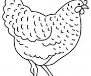 Coloriage et dessins gratuit Poulet couleur à imprimer
