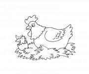 Coloriage dessin  Poule 22