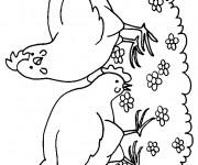 Coloriage Poules au jardin