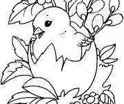 Coloriage dessin  Poussin 10
