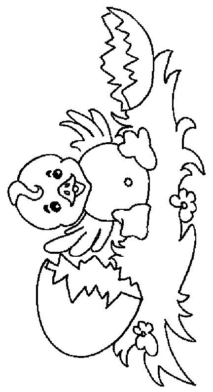 Coloriage et dessins gratuits Poussin essaie de voler à imprimer