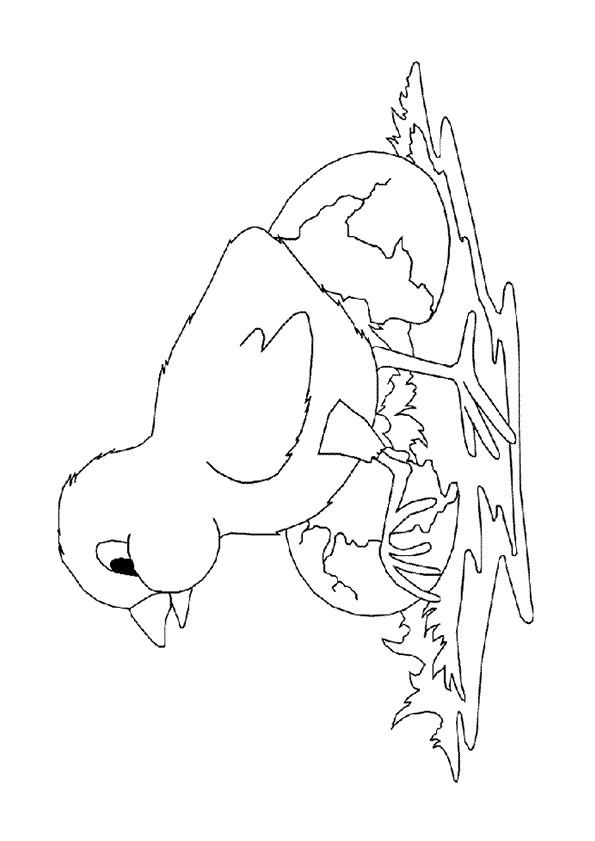 Coloriage et dessins gratuits Poussin maternelle à imprimer