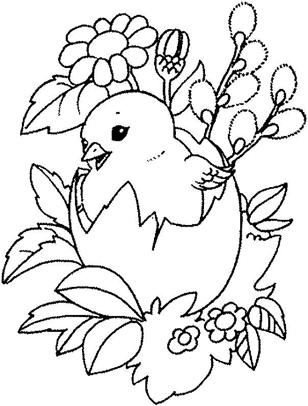 Coloriage poussin trop mignon dessin gratuit imprimer - Dessin de poussin ...