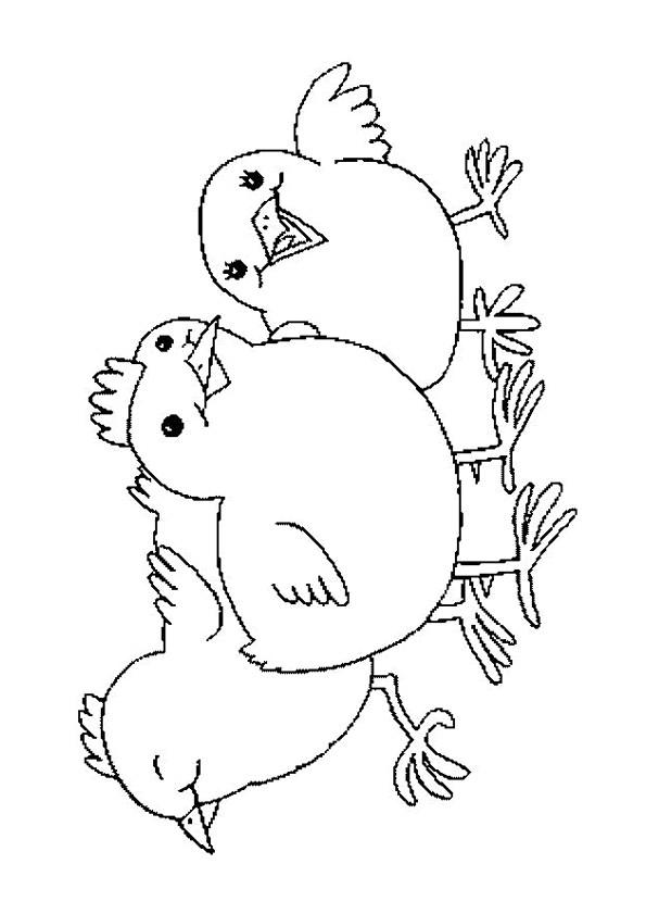 Coloriage et dessins gratuits Poussins en plein air à imprimer