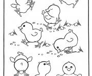 Coloriage et dessins gratuit Poussins qui jouent à imprimer
