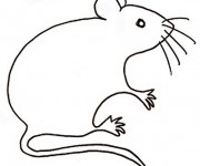 Coloriage dessin  Rat 17