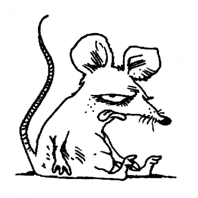 Coloriage et dessins gratuits Rat humoristique à imprimer