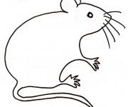 Coloriage Rat maternelle