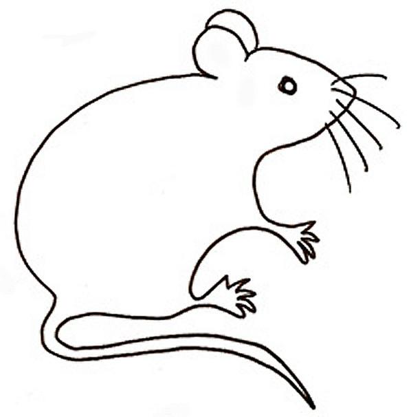 Coloriage et dessins gratuits Rat maternelle à imprimer