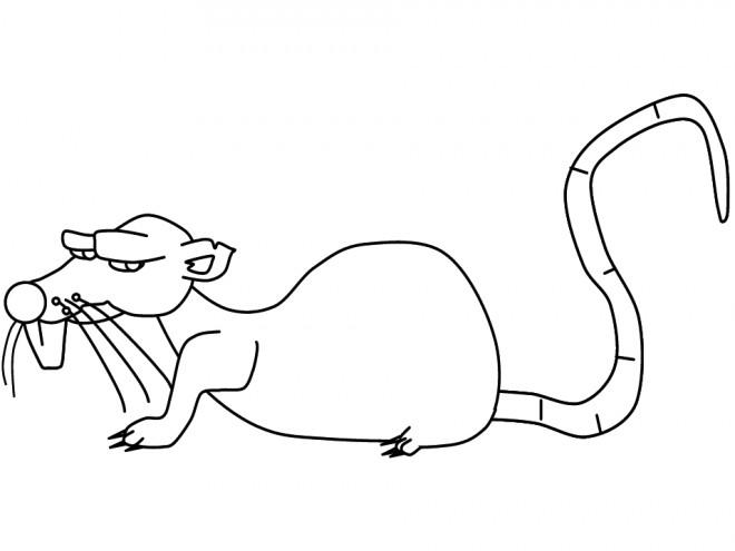 Coloriage Rat Nerveux Dessin Gratuit à Imprimer