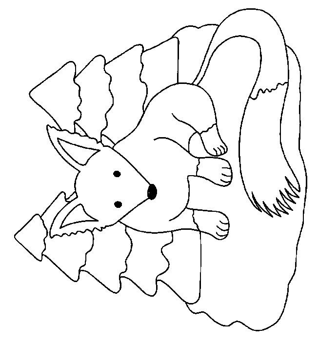 Coloriage et dessins gratuits Le Renard dans la forêt à imprimer