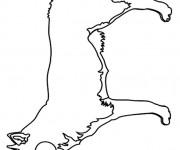 Coloriage dessin  Renard 16