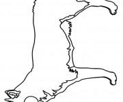Coloriage et dessins gratuit Renard à découper à imprimer