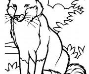 Coloriage et dessins gratuit Renard dans la nature à imprimer