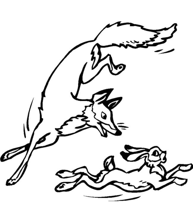 Coloriage et dessins gratuits Renard en chasse à imprimer