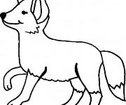 Coloriage et dessins gratuit Renard en couleur à imprimer