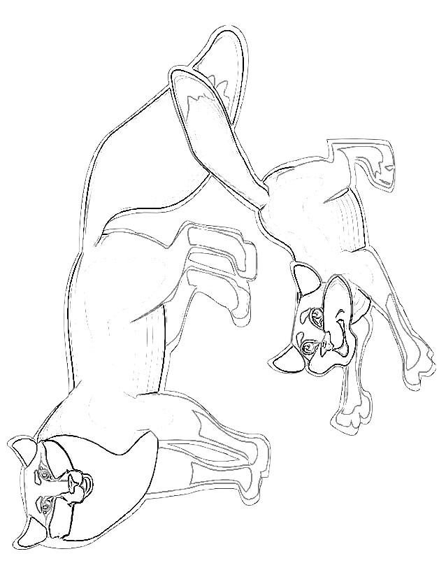 Coloriage et dessins gratuits Renard et son petit au crayon à imprimer