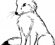 Coloriage et dessins gratuit Renard Roux à imprimer