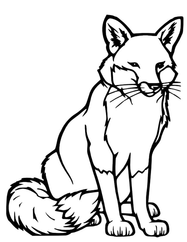Coloriage renard vecteur dessin gratuit imprimer - Renard en dessin ...