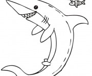 Coloriage dessin  Requin 19