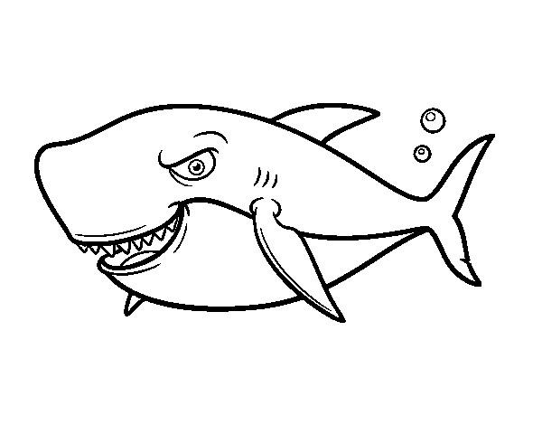 Coloriage et dessins gratuits Requin avec le regard méchant à imprimer