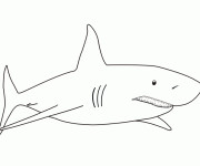 Coloriage Requin blanc