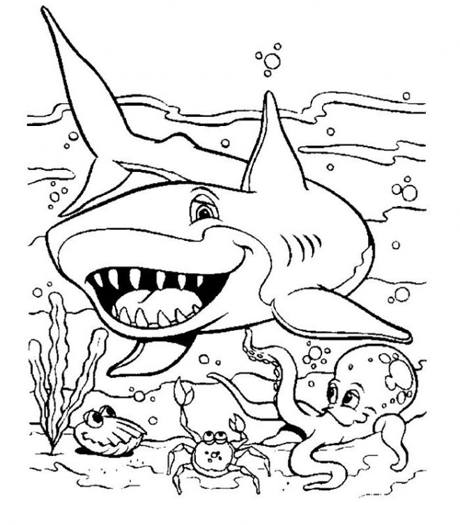 Coloriage requin cartoon dessin gratuit imprimer - Requin en dessin ...