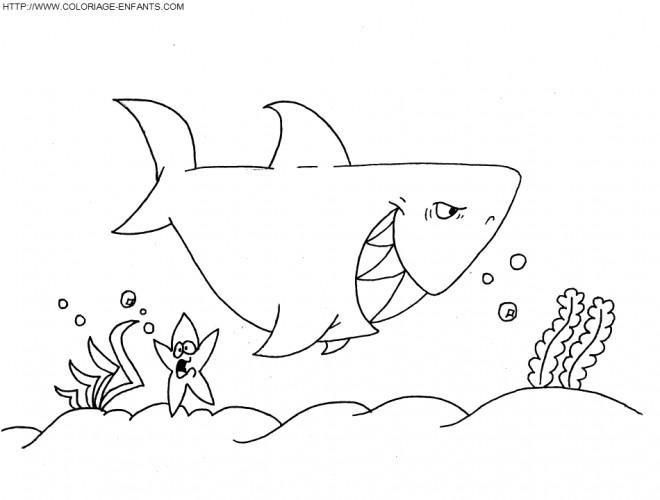 Coloriage requin dans la mer dessin gratuit imprimer - Coloriage de requin a imprimer gratuit ...