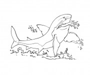 Coloriage et dessins gratuit Requin en colère à imprimer