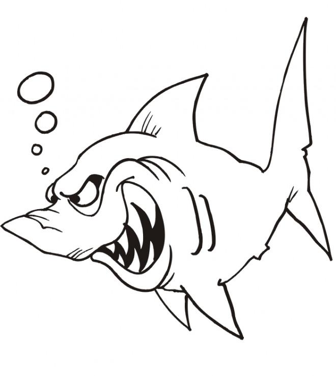 Coloriage requin m chant dessin gratuit imprimer - Requin dessin ...