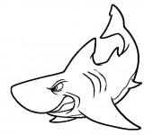 Coloriage Requin nerveux