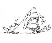 Coloriage et dessins gratuit Requin prédateur à imprimer