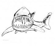 Coloriage Requin qui fait peur