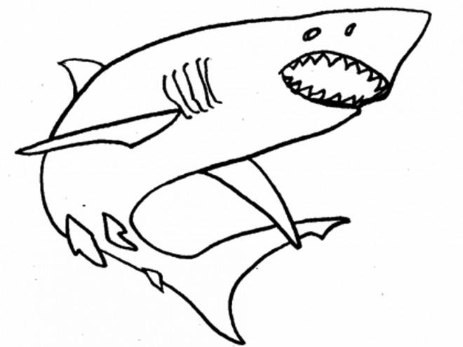 Coloriage Requin simple dessin gratuit à imprimer