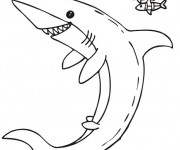 Coloriage Requin souriant