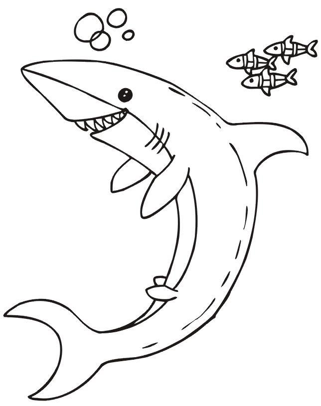 Coloriage et dessins gratuits Requin souriant à imprimer