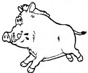 Coloriage dessin  Porc 27