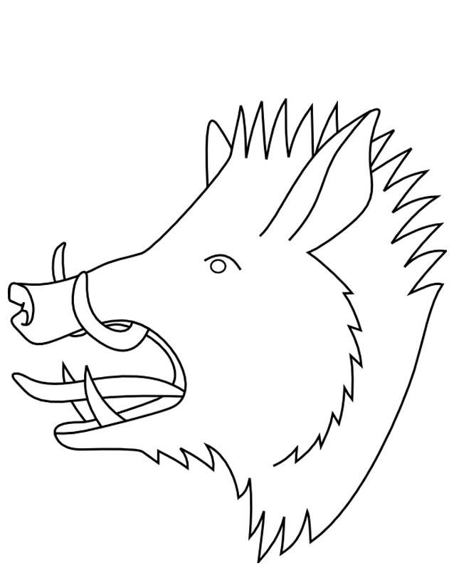 Coloriage et dessins gratuits Sanglier 3 à imprimer