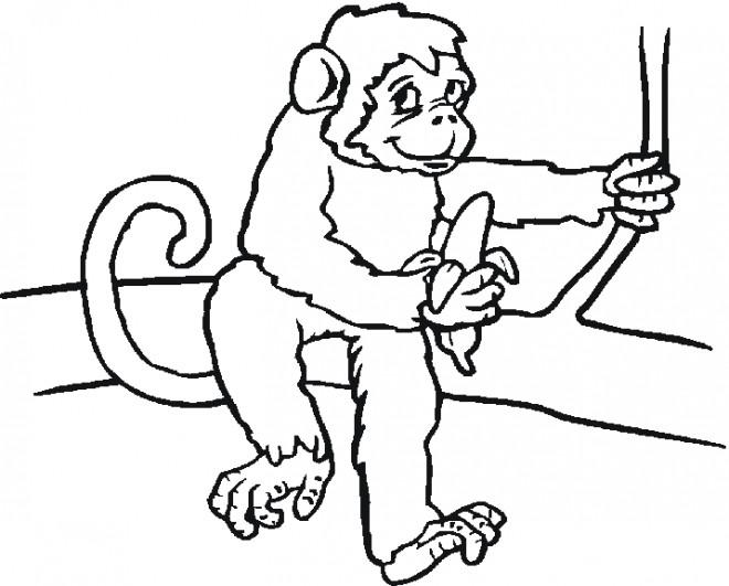 Coloriage et dessins gratuits Bébé Singe à imprimer