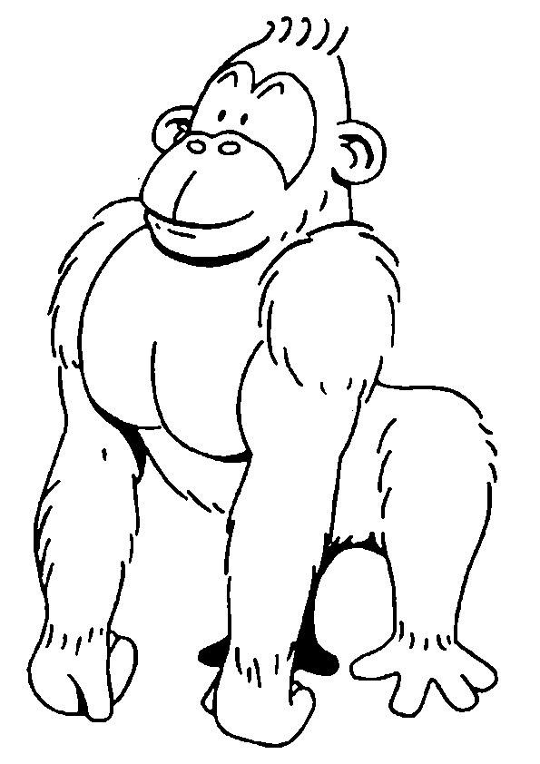 Coloriage le fort gorille dessin gratuit imprimer - Dessin guenon ...