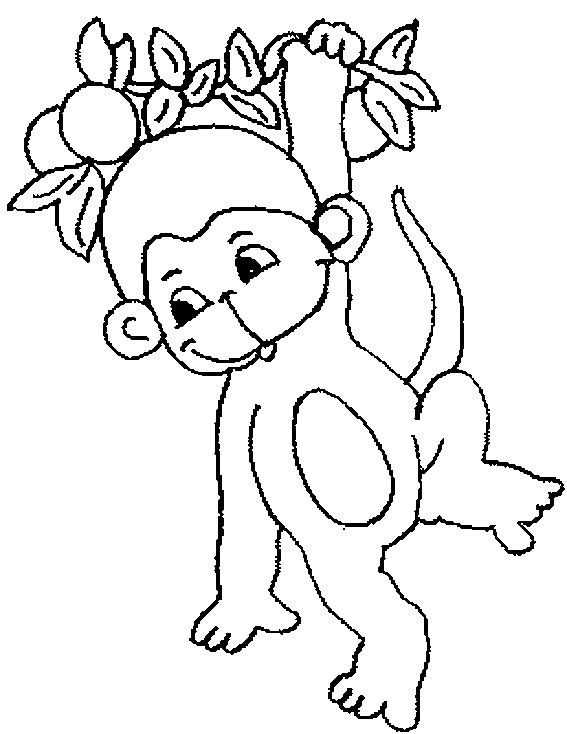 Coloriage et dessins gratuits Petit singe à imprimer