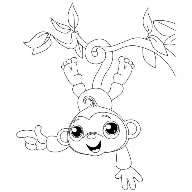 Coloriage et dessins gratuits Singe accroché à une liane à imprimer