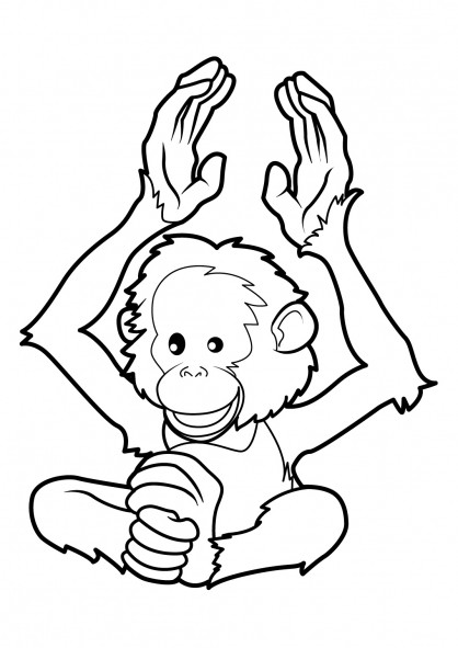 Coloriage et dessins gratuits Singe animal en ligne à imprimer