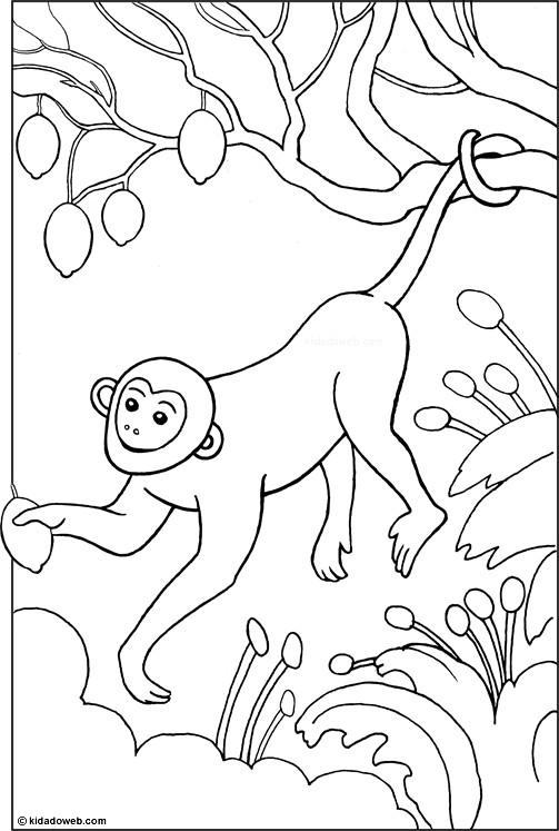 Coloriage singe dans un arbre dessin gratuit imprimer - Dessin guenon ...
