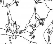 Coloriage Singe dessin animal en ligne