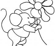 Coloriage Souris et fleur