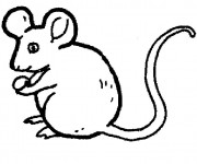 Coloriage Souris simple