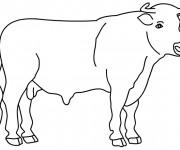 Coloriage dessin  Taureau 2