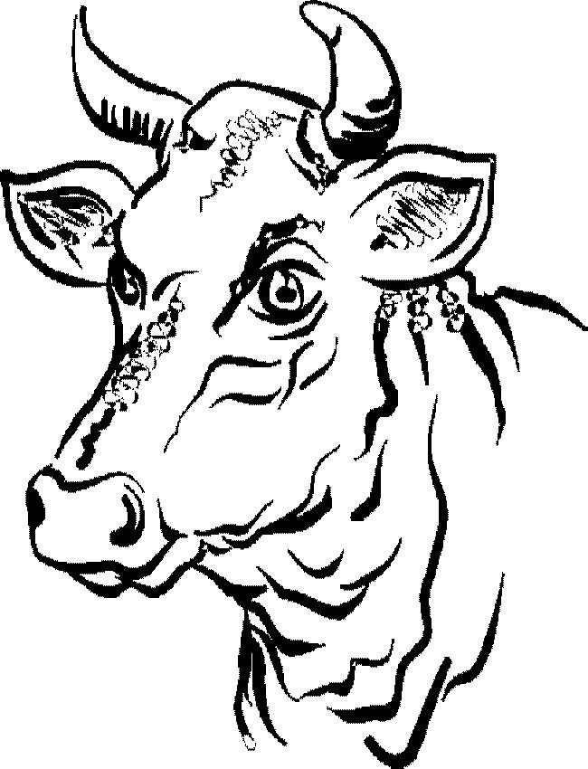 Coloriage t te de taureau dessin gratuit imprimer - Vache dessin facile ...