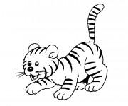 Coloriage et dessins gratuit Bébé de Tigre à imprimer